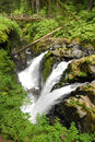 Sol Duc Falls Royalty Free Stock Photos