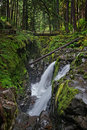 Sol Duc Falls in Olympic National Park, Washington Royalty Free Stock Image