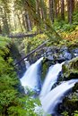 Sol duc waterfall Stock Image