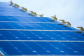 Solar Cell Generated Electrical Power by Sun Light, Closeup of Blue Photovoltaic Solar Panels, Green Energy for Safe World Royalty Free Stock Photo