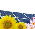 Solar energy cells in clean nature Royalty Free Stock Image