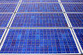 Solar panels fill the frame Royalty Free Stock Photos