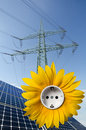 Solar panels, sunflower with socket, utility pole Royalty Free Stock Photography