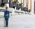 Soldier of Kremlin regiment on service Royalty Free Stock Photo