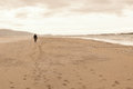 Solitary man taken from behind walking in an empty beach. Royalty Free Stock Photo