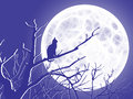 Solitary purple a cat contemplates a full moon from the bare branches of a tree Stock Photo