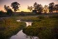 Solovetsky landscape, Solovki Royalty Free Stock Photo
