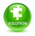 Solution (puzzle icon) glassy green round button