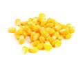 Some corn kernels on a white background Royalty Free Stock Images