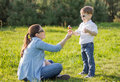 Son giving a bouquet of flowers to his pregnant mother in a fiel happy cute sunny field Stock Image
