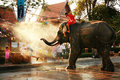 Songkran Festival Stock Photography