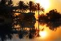 Sonnenaufgang über Swimmingpool Stockbild