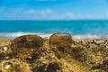Sonnenbrille im sand Lizenzfreies Stockbild