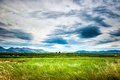 Soothing view of the green meadow and cloudy sky Royalty Free Stock Image