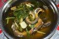 Sopa del cocinero de la anguila Foto de archivo libre de regalías