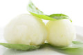 Sorbet from apple or lemon cold and tasty Royalty Free Stock Photography