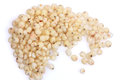 Sorghum Grains Royalty Free Stock Photo