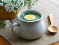 Sorrel soup. Royalty Free Stock Photos