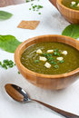 Sorrel soup cream with herbs Royalty Free Stock Images