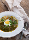 Sorrel soup with egg served in plate Royalty Free Stock Photography