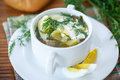 Sorrel soup with and eggs in a bowl on the table Stock Images