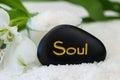 Soul Royalty Free Stock Photo