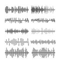 Sound wave forms vector illustration. Soundtrack audio music amplitude waveforms equalizer
