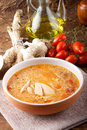Soup with chicken broth Royalty Free Stock Photo