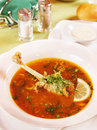 Soup with a duck Stock Photography