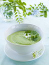 Soup pea cream in bowl selective focus Royalty Free Stock Images