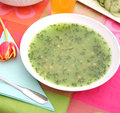 Soup of spinach a green Royalty Free Stock Photography