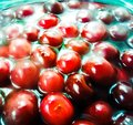 Sour cherries in brandy abstract Royalty Free Stock Photo