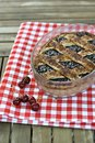 Sour Cherry Pie Royalty Free Stock Photo