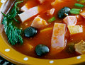 Sour russian soup seljanka a thick spicy and ingredient being either meat fish or mushrooms all of them contain pickled cucumbers Royalty Free Stock Images
