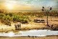 South African Safari Wildlife Fantasy Scene Royalty Free Stock Photo