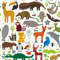 South America seamless pattern sloth anteater toucan lama bat fur seal armadillo boa manatee dolphin Maned wolf jaguar macaw lizar Royalty Free Stock Photo