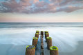 South carolina charleston folly beach timber groin erosion control structure pilings line the shore at in as measures to protect Stock Photography