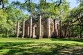 South Carolina Sheldon Church Ruins Royalty Free Stock Photo
