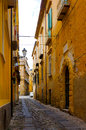 The south italy area calabria tropea city italian street and historic architecture Stock Images