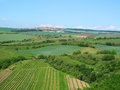 South moravia landscape with vineyard and town velke pavlovice on horizon czech republic Stock Photo