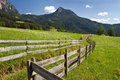 South tyrol meadows nice hiking treck in Stock Photography