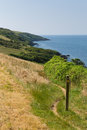 South west coast path polkerris cornwall from heading in a southerly direction on a beautiful summer day Stock Photo