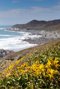 South west coast path woolacombe devon view england towards morte point Royalty Free Stock Images