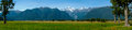 Southern Alps from Lake Matheson Royalty Free Stock Photo