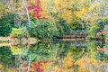 Southern appalachian autumn colors reflected in the blue ridge mountains reflect in julian price memorial lake along the blue Royalty Free Stock Images