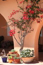 Southern home details of a with red bougainvilleas Royalty Free Stock Photo