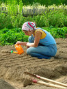 Sowing and watering Royalty Free Stock Photo
