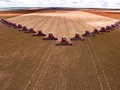 Soy harvest mato grosso brazil march mass soybean harvesting at a farm in campo verde Stock Photography