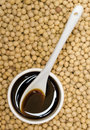 Soy sauce and beans Royalty Free Stock Photos