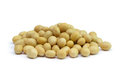Soya beans Royalty Free Stock Photo